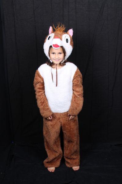 Kinderenverkleedkleding pak eenkhoorn, bruin en grijs
